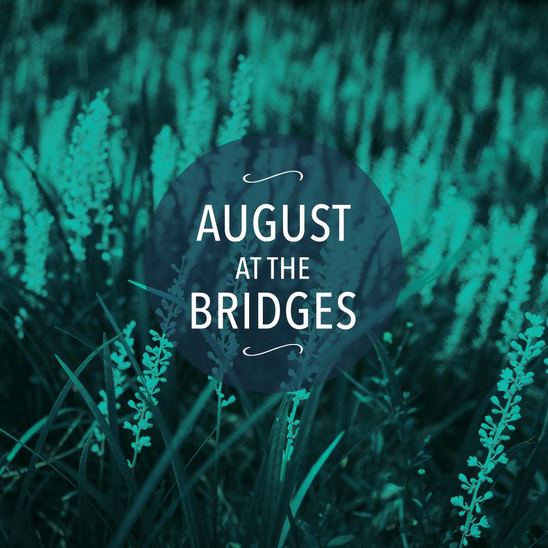 BRIDGES_AUGUST_blog.png