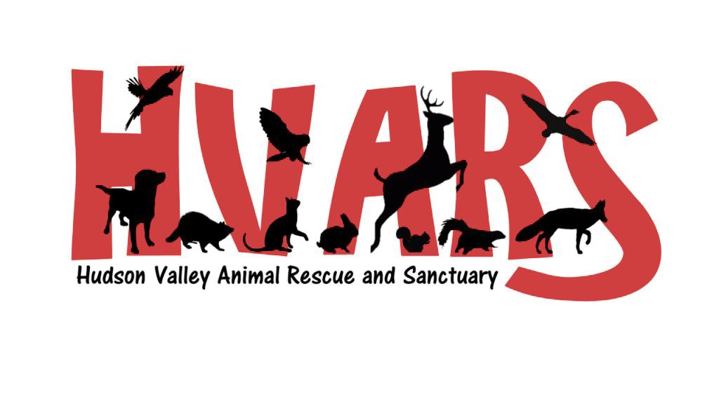 HVARS+Logo.png