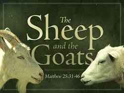 Sermon #17 - The Sheep & the Goats