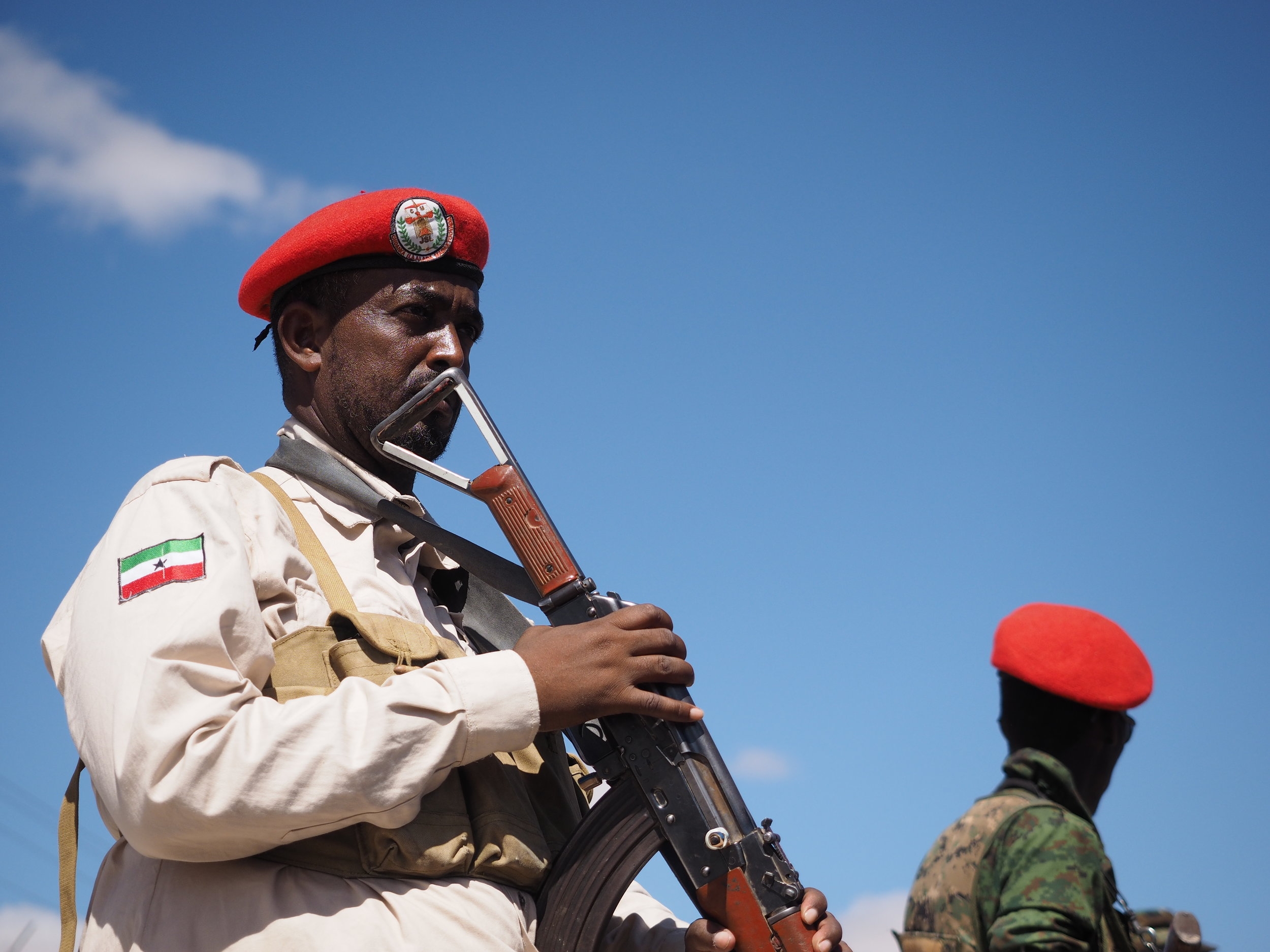 Soldiers guard the President at the Independence Day parade.