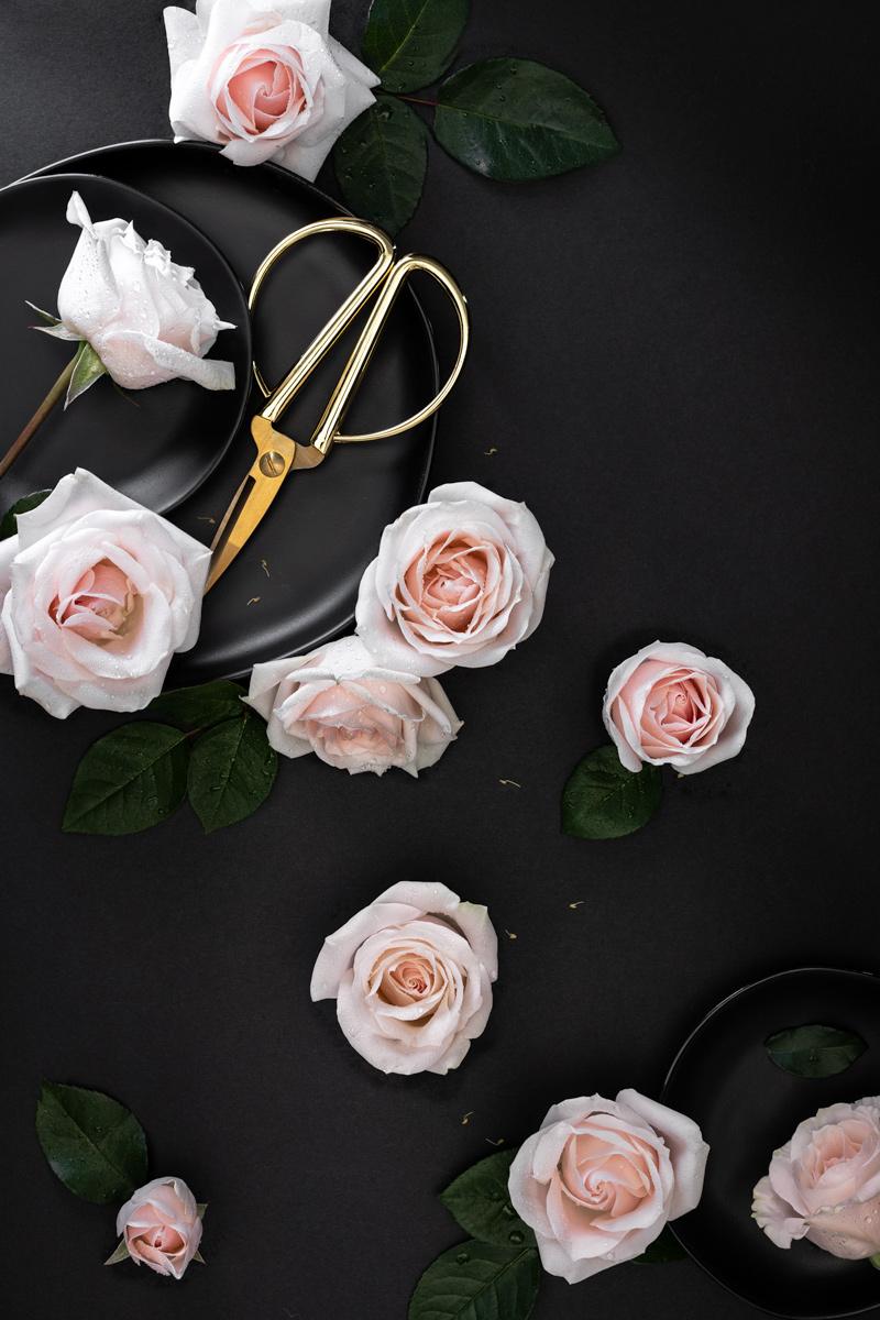 rose-flatlay-jesica-kurashima-seattle-prop-stylist.jpg