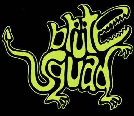 Brute Squad is your Two Time Women's National Champion (2015, 2016), 2017 US National Championship Runner Up, and 2018 World Championship Qualifier. We are the semi-professionals Women's Ultimate Frisbee team out of the greater New England area. -