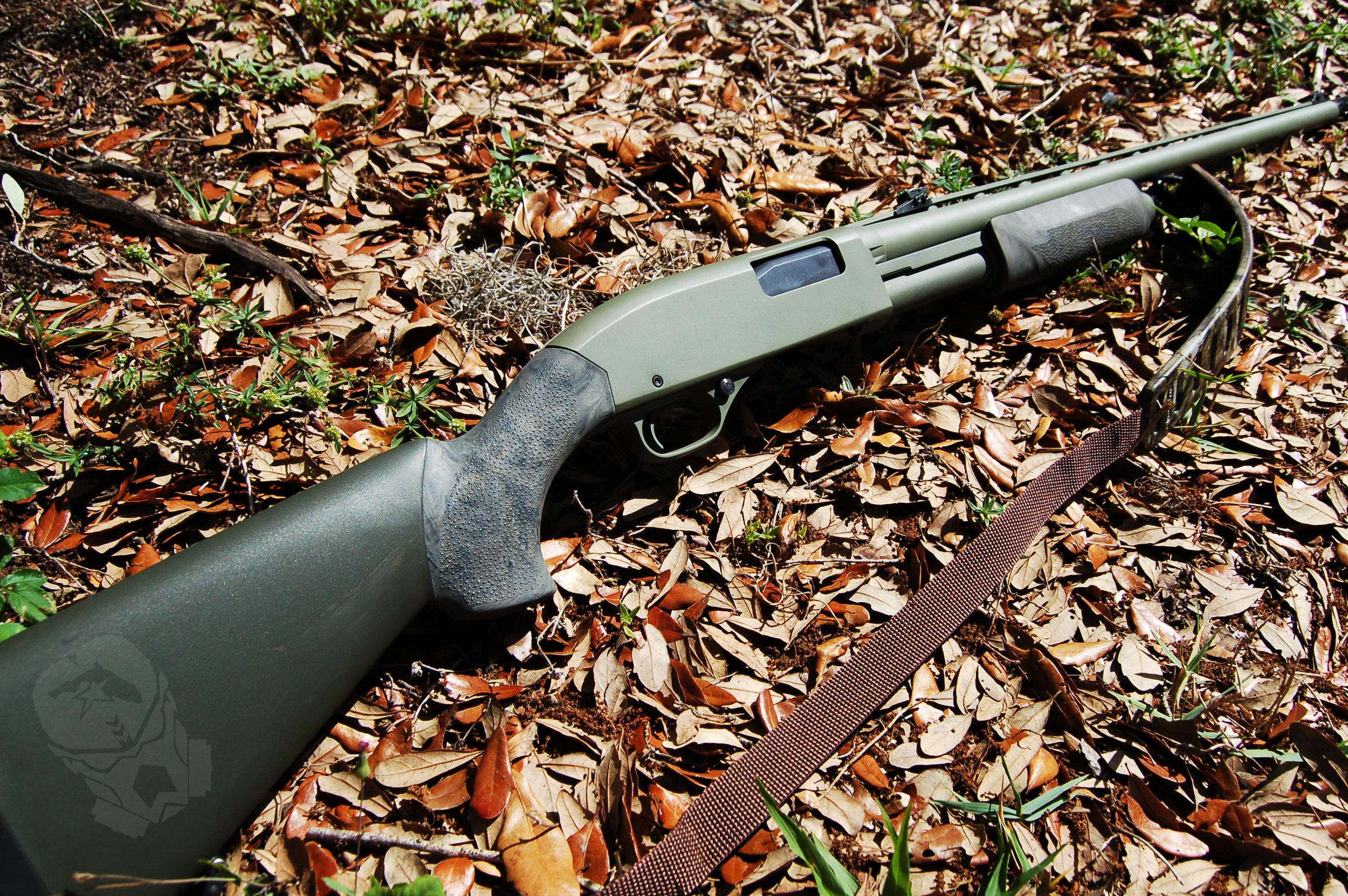 crockett_turkey_gun.jpg