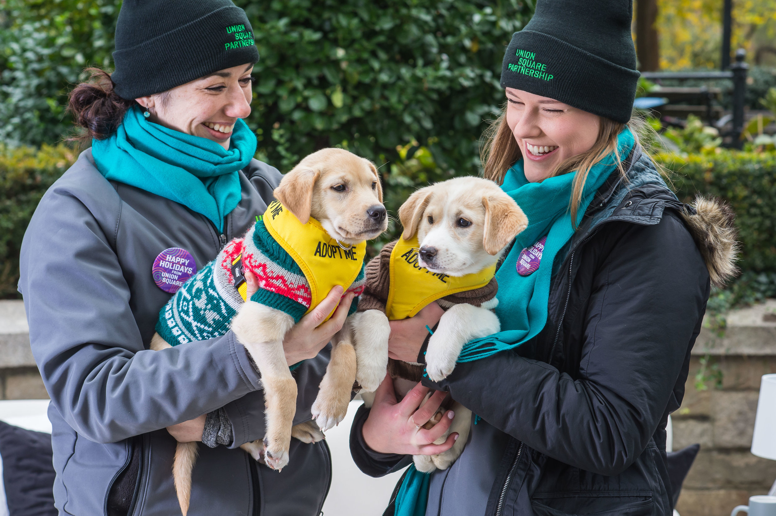 Happy Pawlidays in Union Square Park_20186.jpg