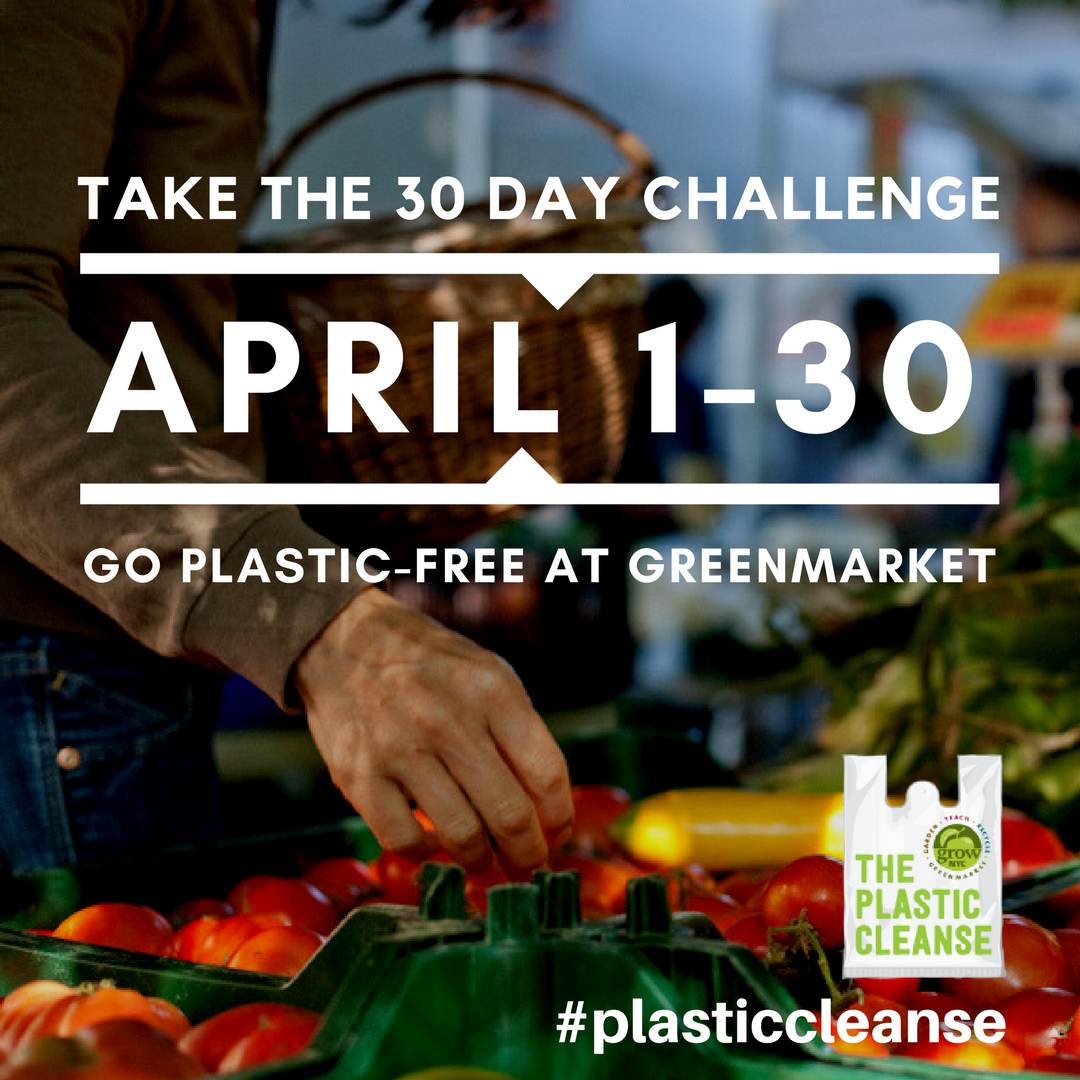 instasquare_plastic_cleanse_30_day_challenge.png
