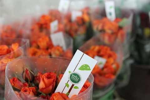 whole-foods-wedding-flowers.jpg