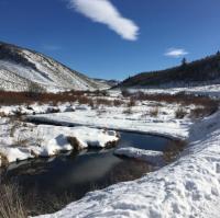 winter-stream.png