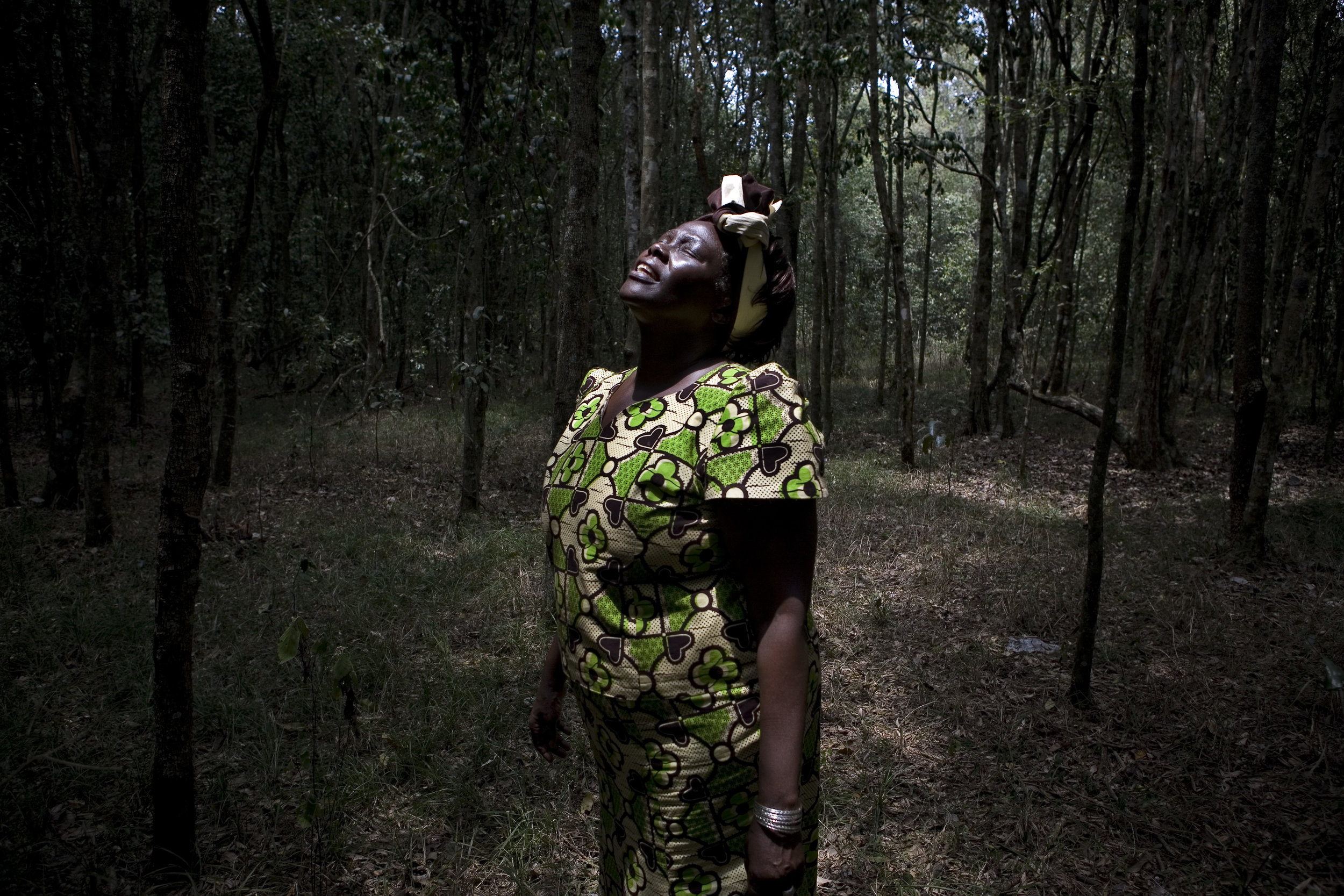 Nobel peace price winner Wangari Maathai, the first African woman and environmentalist to win the prize, in Karura Forest, Kenya.