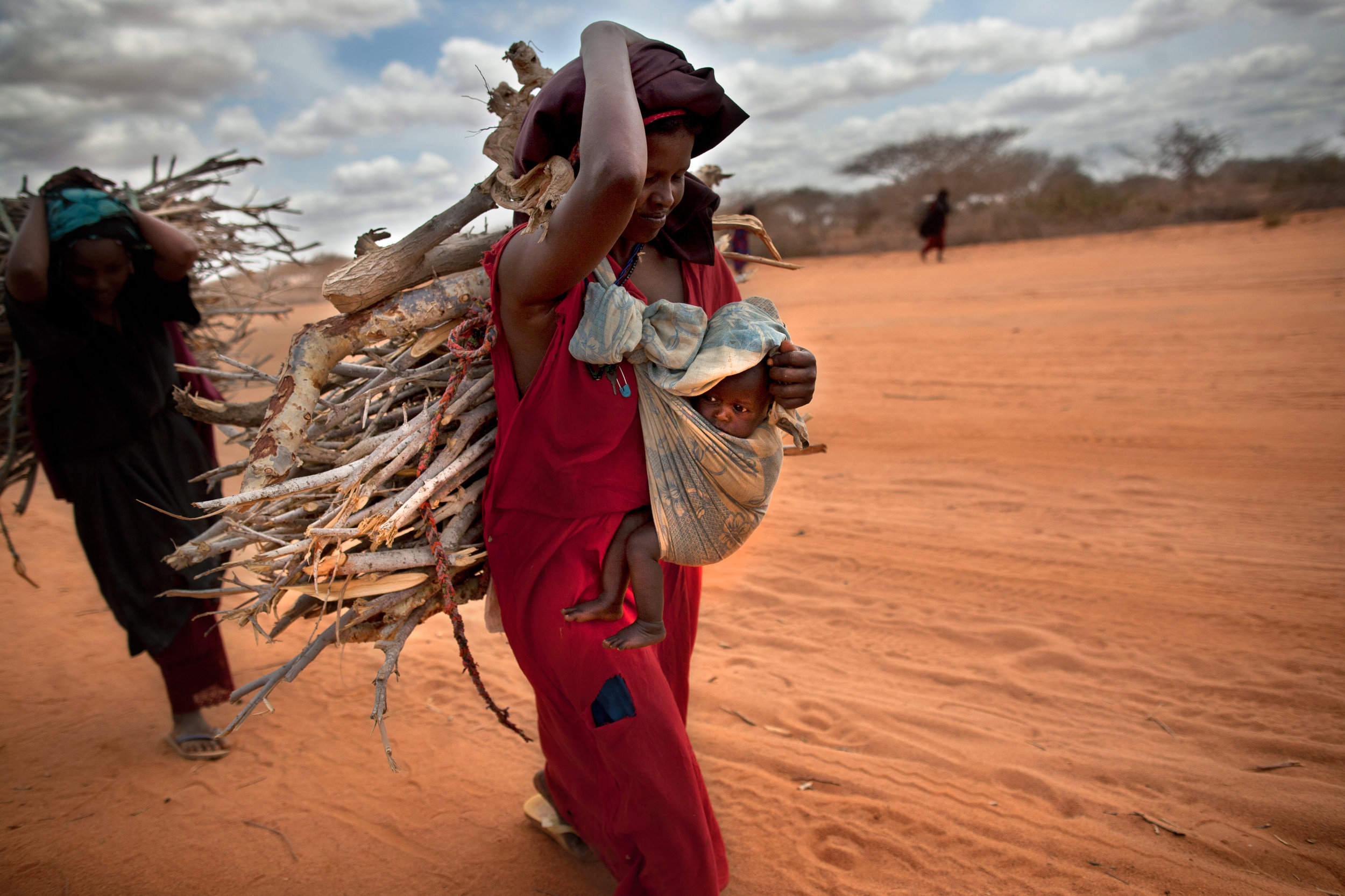 Women carry firewood between Ifo camp and Dadaab town on a dusty stretch of road. Dadaab is the largest refugee camp in the world, set up in 1991 to house Somalis fleeing the civil war.
