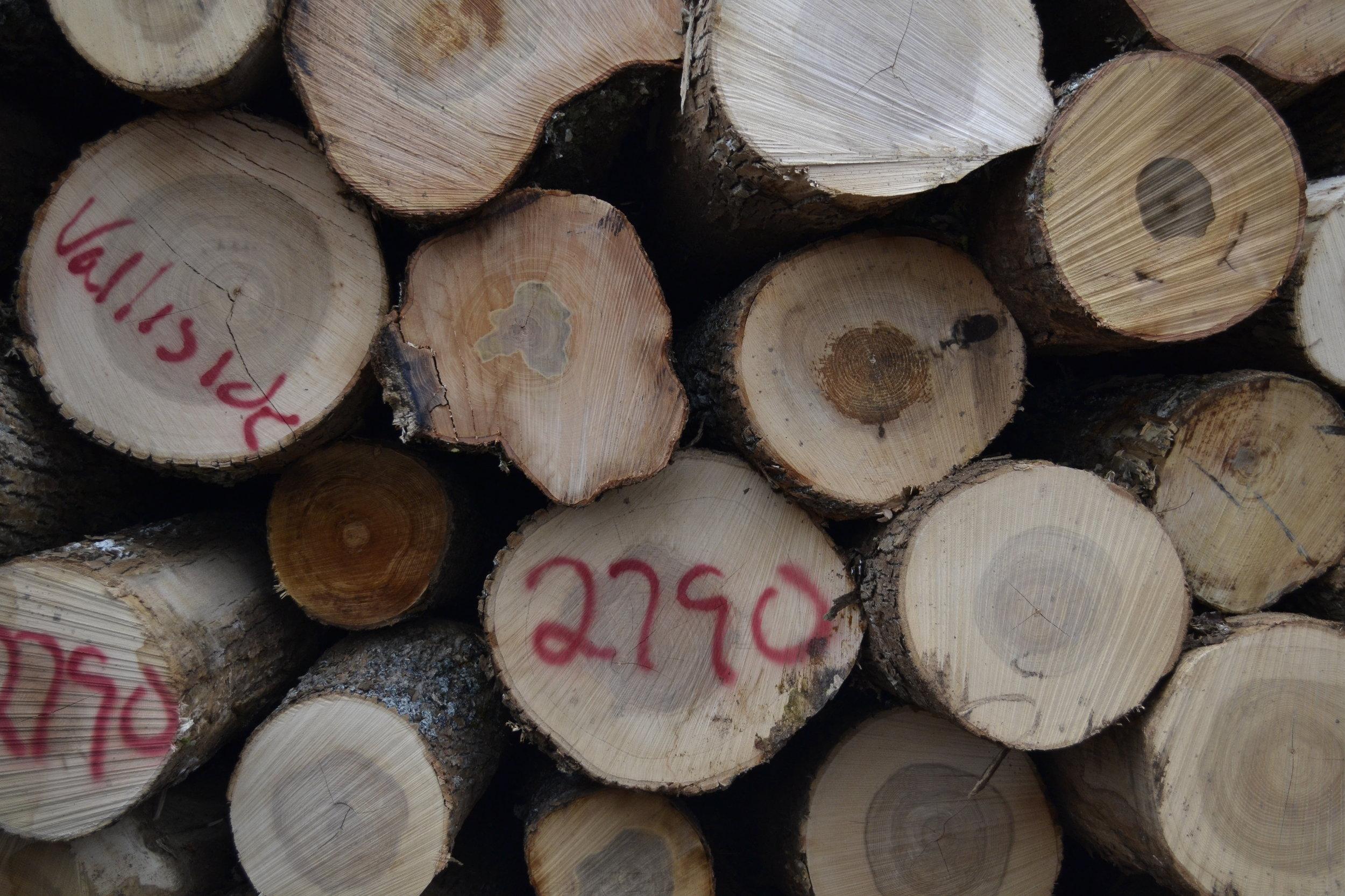 Wood Marketing