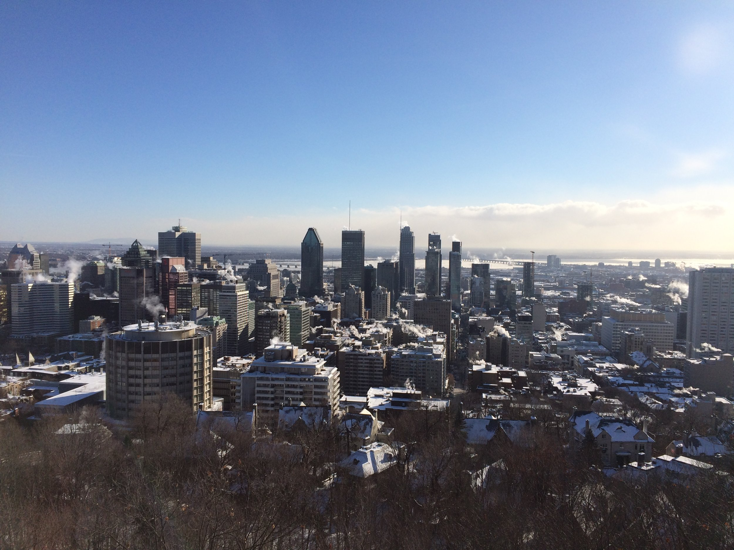 The view of Montreal from the Chalet du Mont Royal. It was a cool 5 degrees at this point. Quite a hike but worth the view.