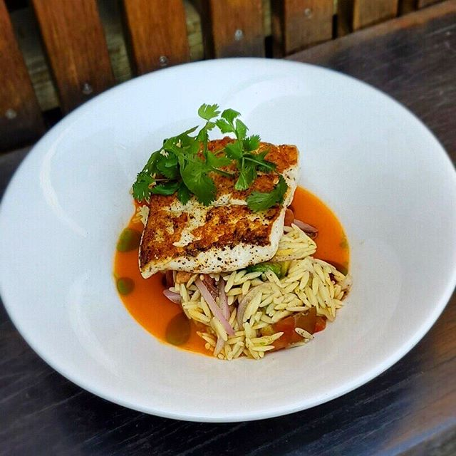 PAN SEARED FISH OF THE DAY ✨ Orzo, heirloom tomato, avocado, red onion, cilantro oil, carrot yuzu aguachile ✨ #starlitesandiego  #hiddengem #freshfishdaily  #eatersandiego