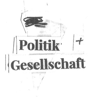 wepsert-navi-politik.jpg