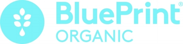 BluePrint-LogoLockUpLeft-Blue.jpg