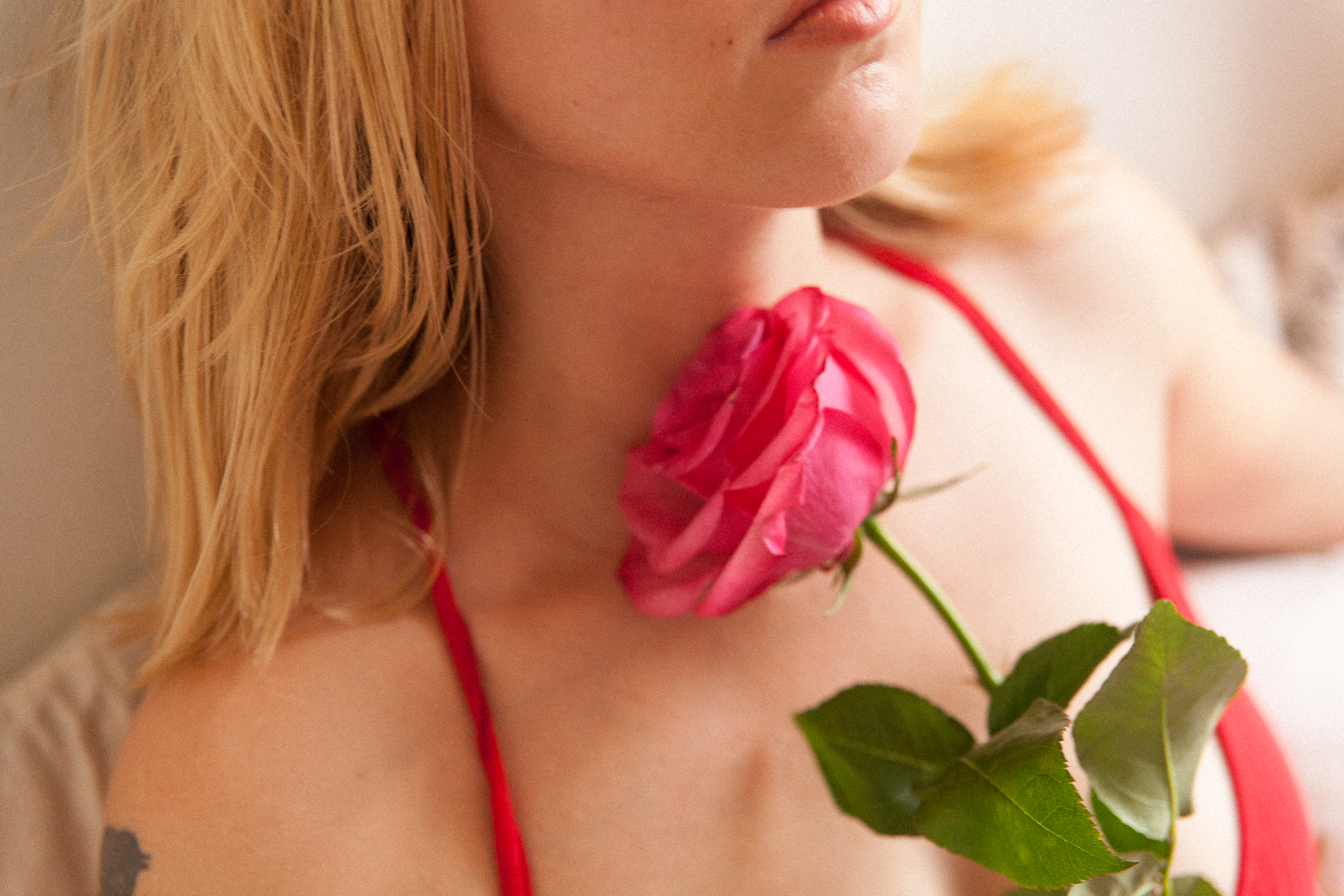 sensual portrait of a woman pink rose red lingerie