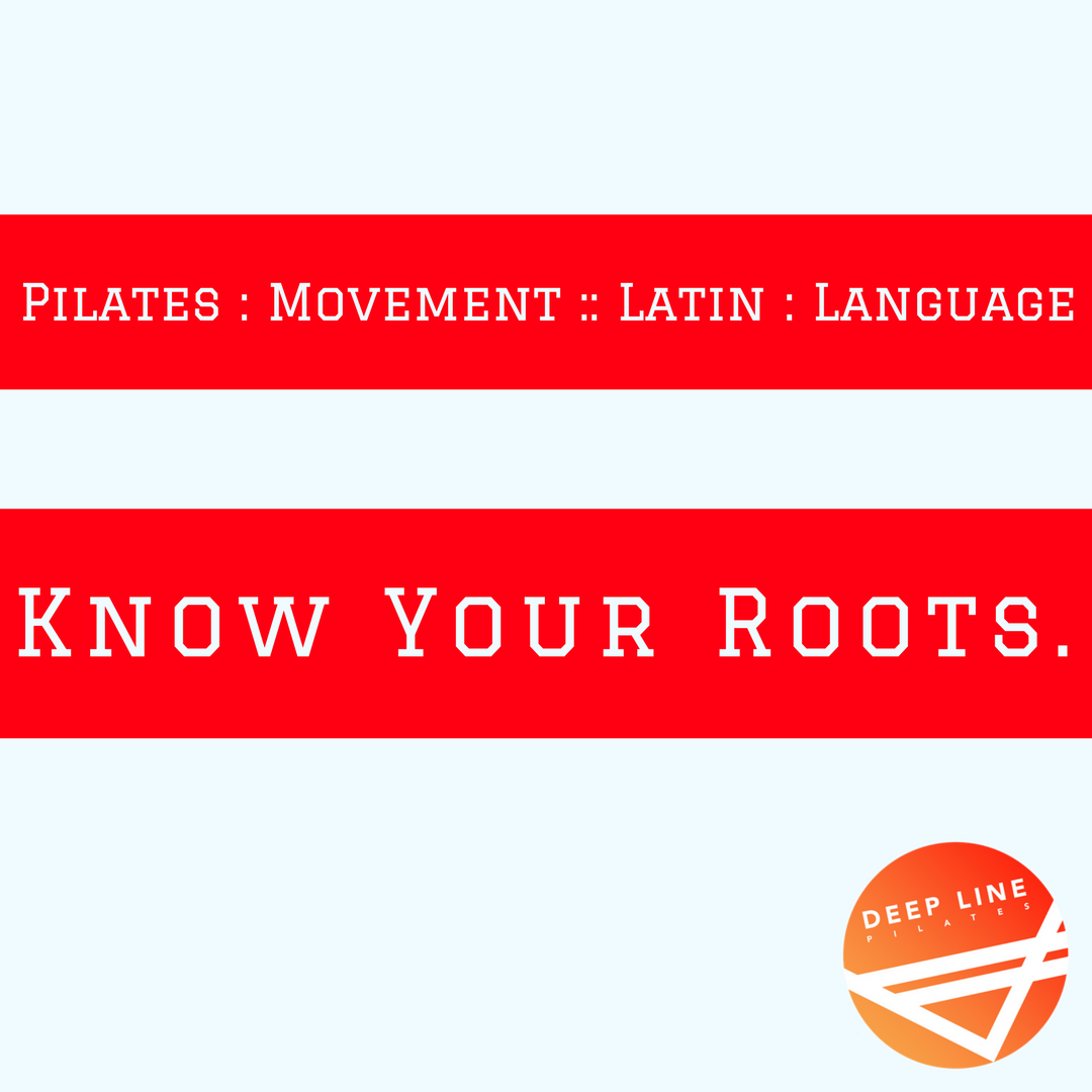Pilates _ MovementLatin _ LanguageKnow your roots..png