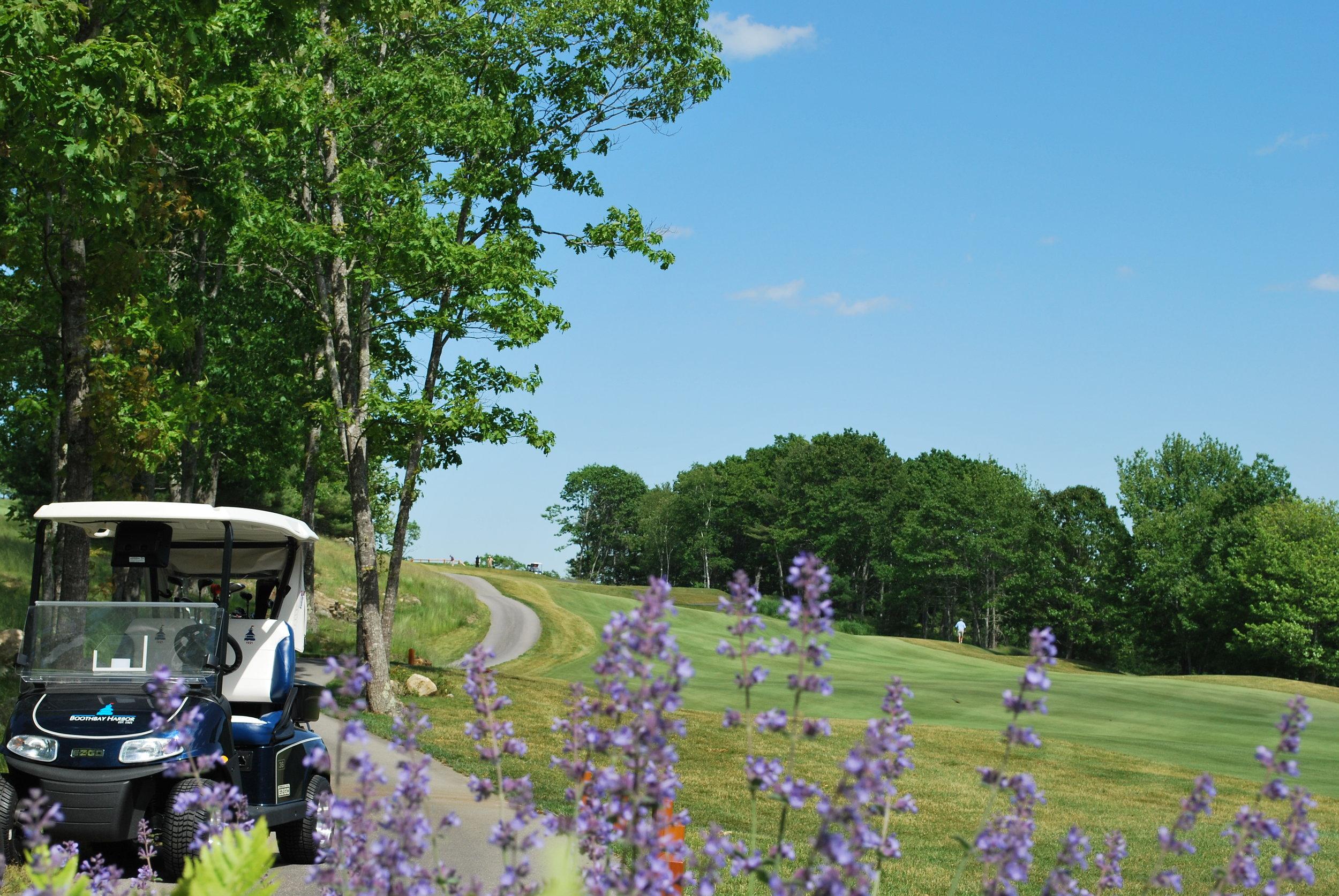 GPS-enabled Golf Carts