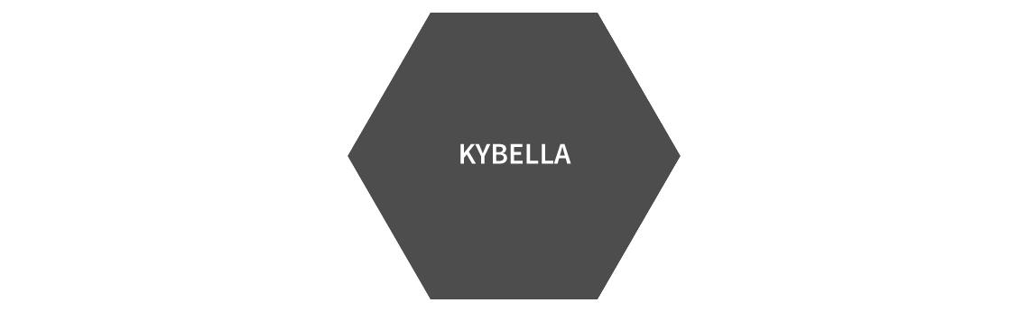 KYBELLA copy.jpg