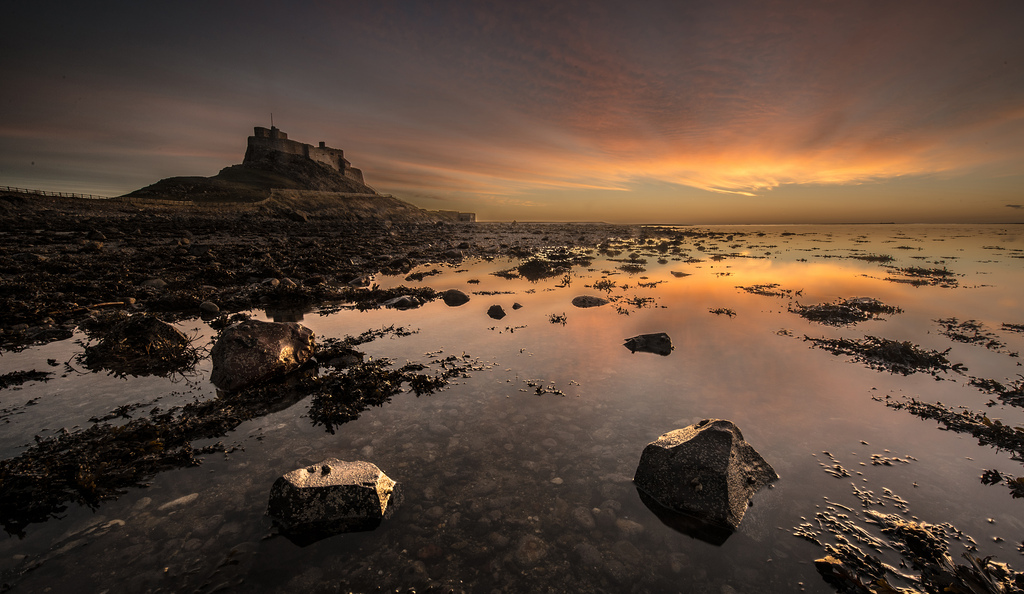 07:00Lindisfarne Castle - A wild early morning sing to start an epic day of singing coast to coast! If you want to join us for this one, you'll need to get on to the island before 4.30am when the tide comes in!Anyone who makes it, we'll meet at NU134417 on the footpath by the coast just before you get to the castle.