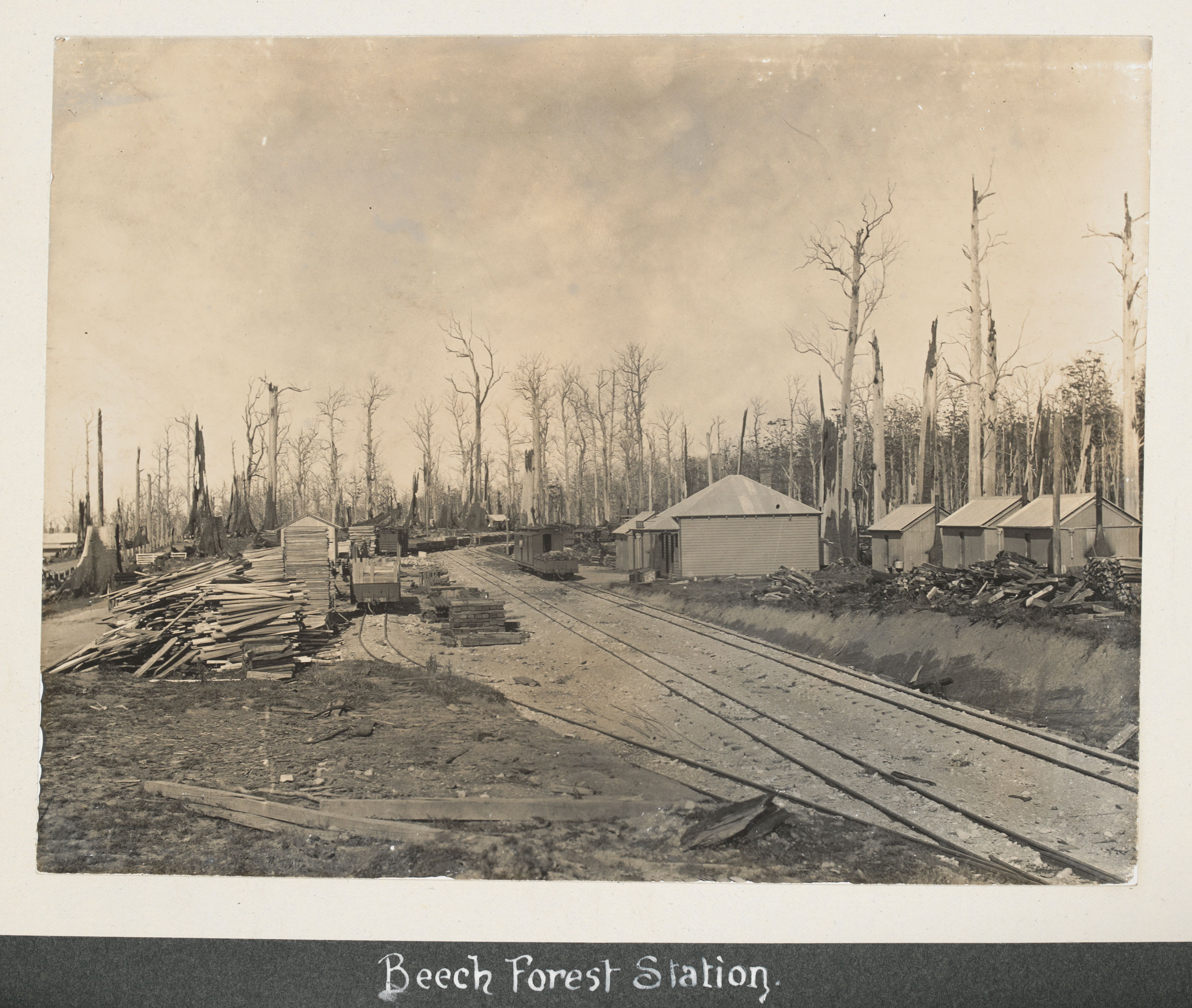 Arnest, J. (1906).  Beech Forest Station [Vic.] [picture].,  In collection: Album of photographs of the Beech Forest and Colac districts, Victoria.