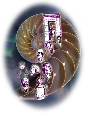 past lives nautilus shell 2.jpg