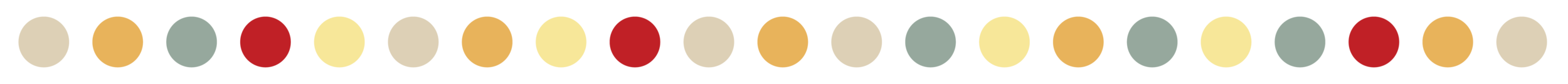 Web Divider_Large Dots_v1.png