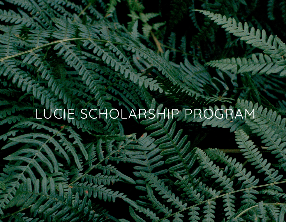 Shortlist for Photo Taken Scholarship