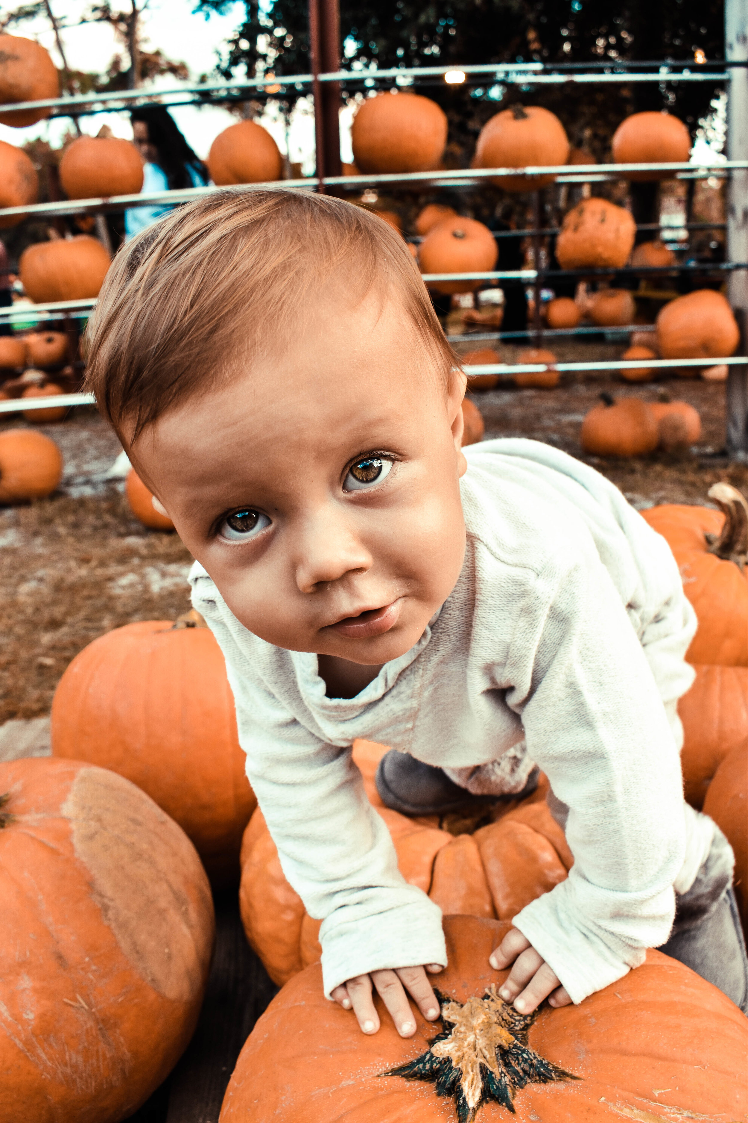 one of my favorites. the tiny fingers on the pumpkin ugh!!