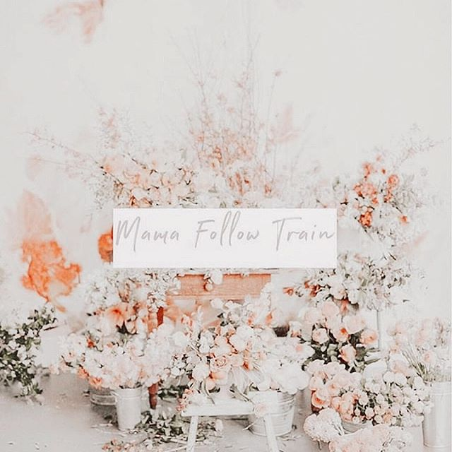 Welcome to our mama Follow Train!  I am very excited to introduce you to some of my favourite ig mamas, all while being able to discover some new ones as well! If you like my account I'm sure you will love these as well. . How it will work: 1. Follow all accounts listed below 2. Find this photo on each account, like it, and comment with your favourite emoji. . Follow: @perfectly.blissful  @laurarogersthat @ashton.noto @brunetteandbabes @catherine.wigg @jessij03 @jgoodtime @karissamariie @kerricolfer @marianelizabeth @pauvivas @the_cityfarmhouse . We will follow back all accounts we find inspiring and share our favorites in our stories!  The fun stops after 24 hours so don't miss it!