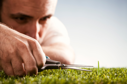 Perfectionist-Cutting-Grass