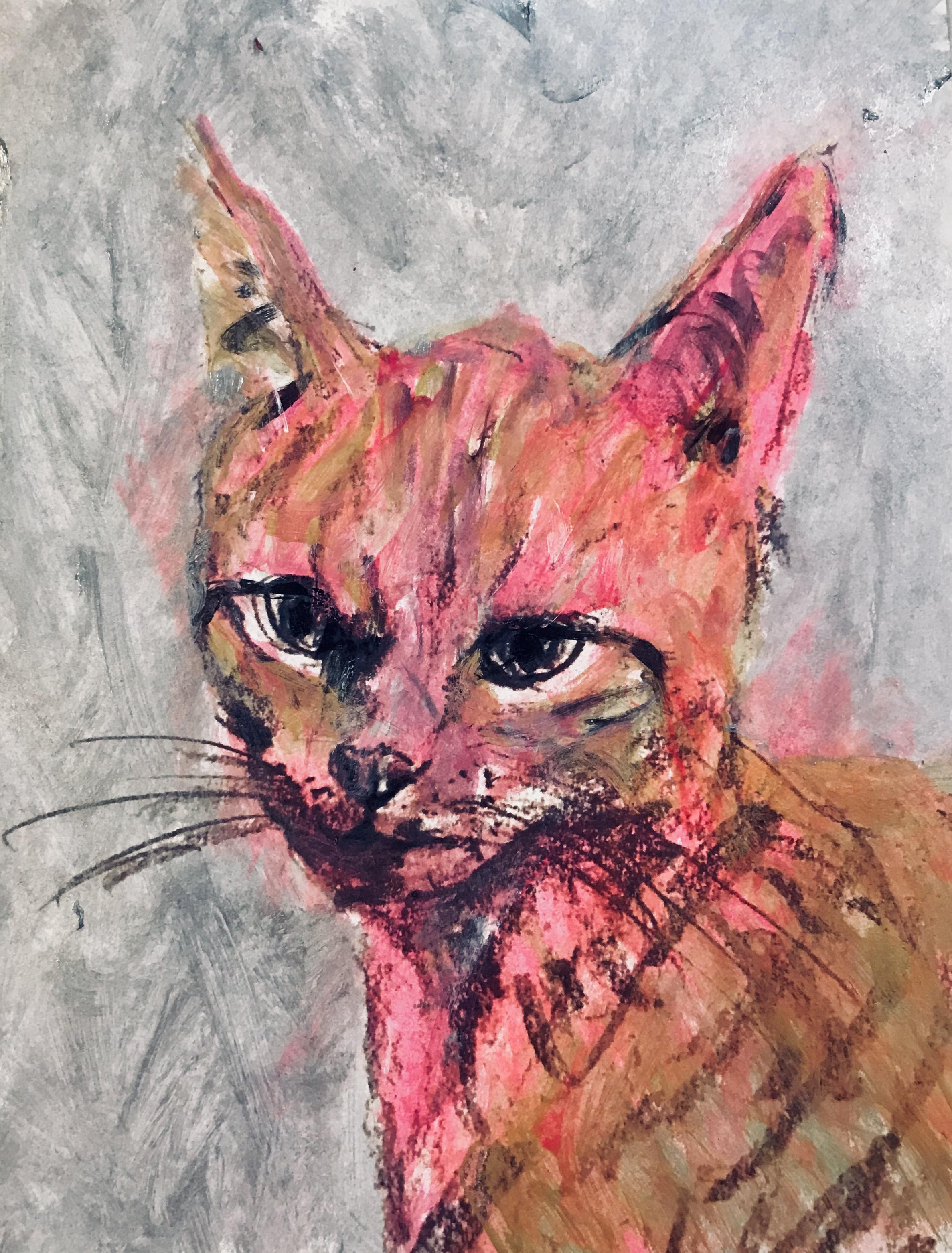Kitten as Pop Icon