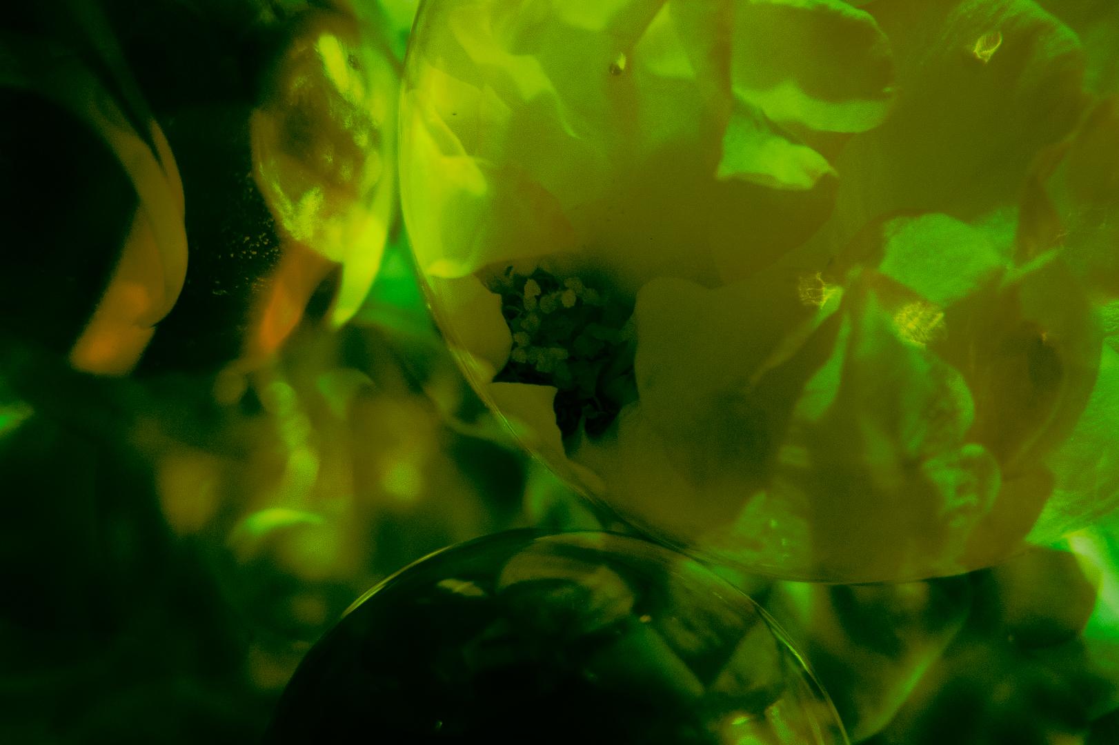 Rose Marbles-2.jpg