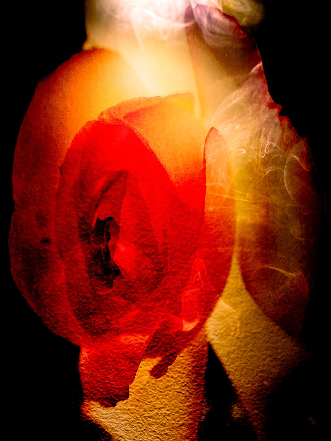 Rosesmoke3-16.jpg