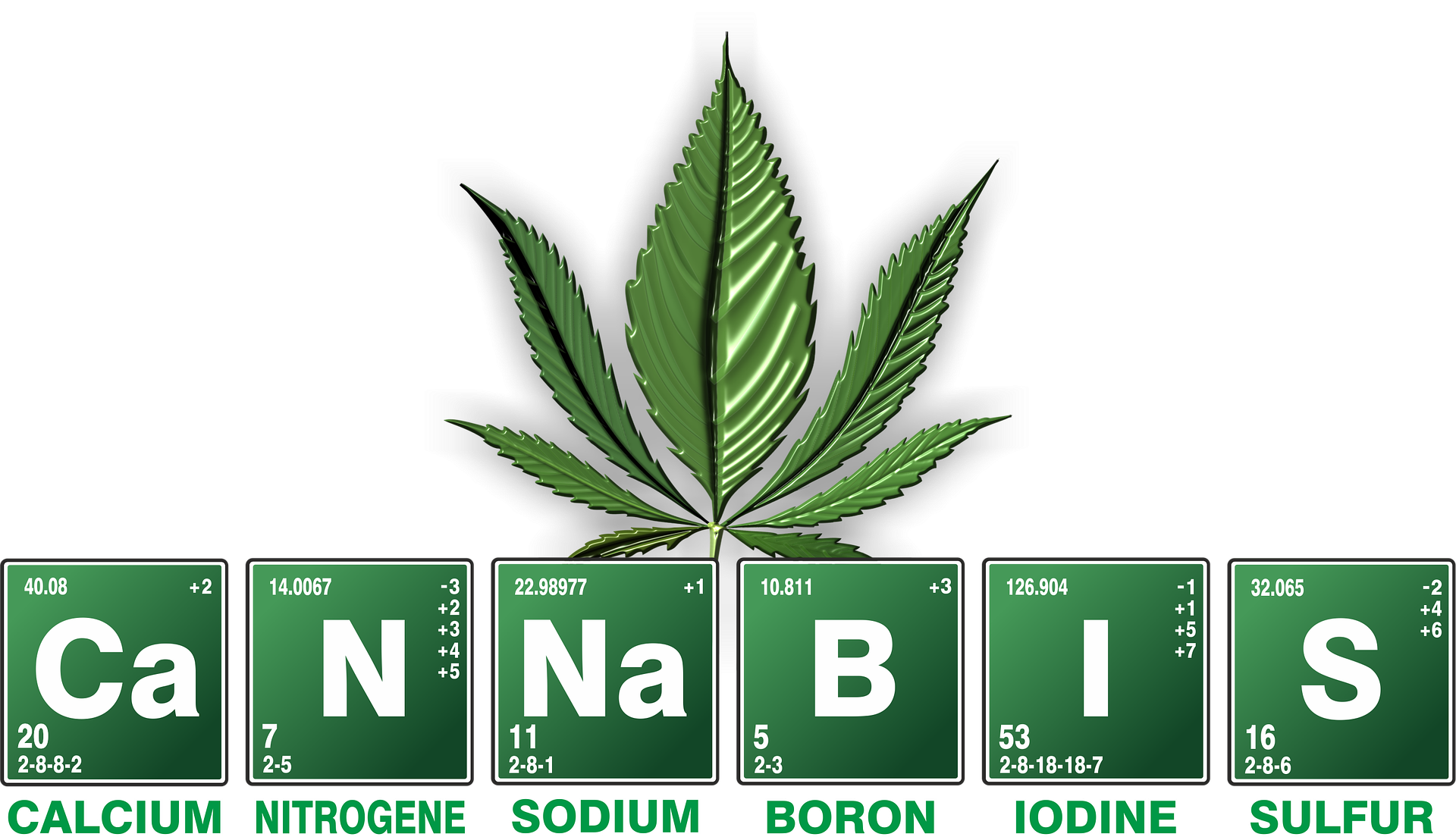 cannabis-2305146_1920.png