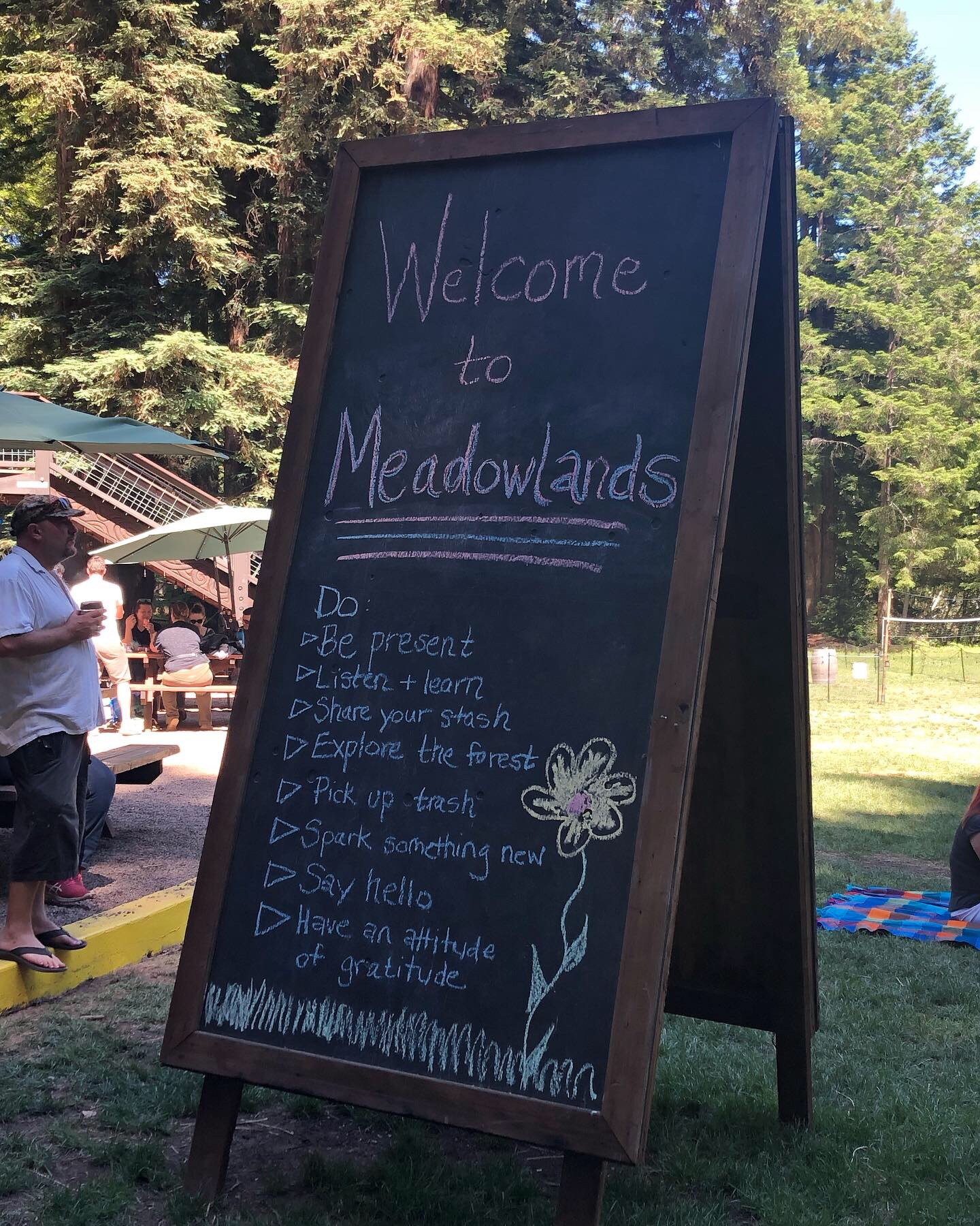 Meadowlands 2019 - Camp Navarro, Mendocino County, CA