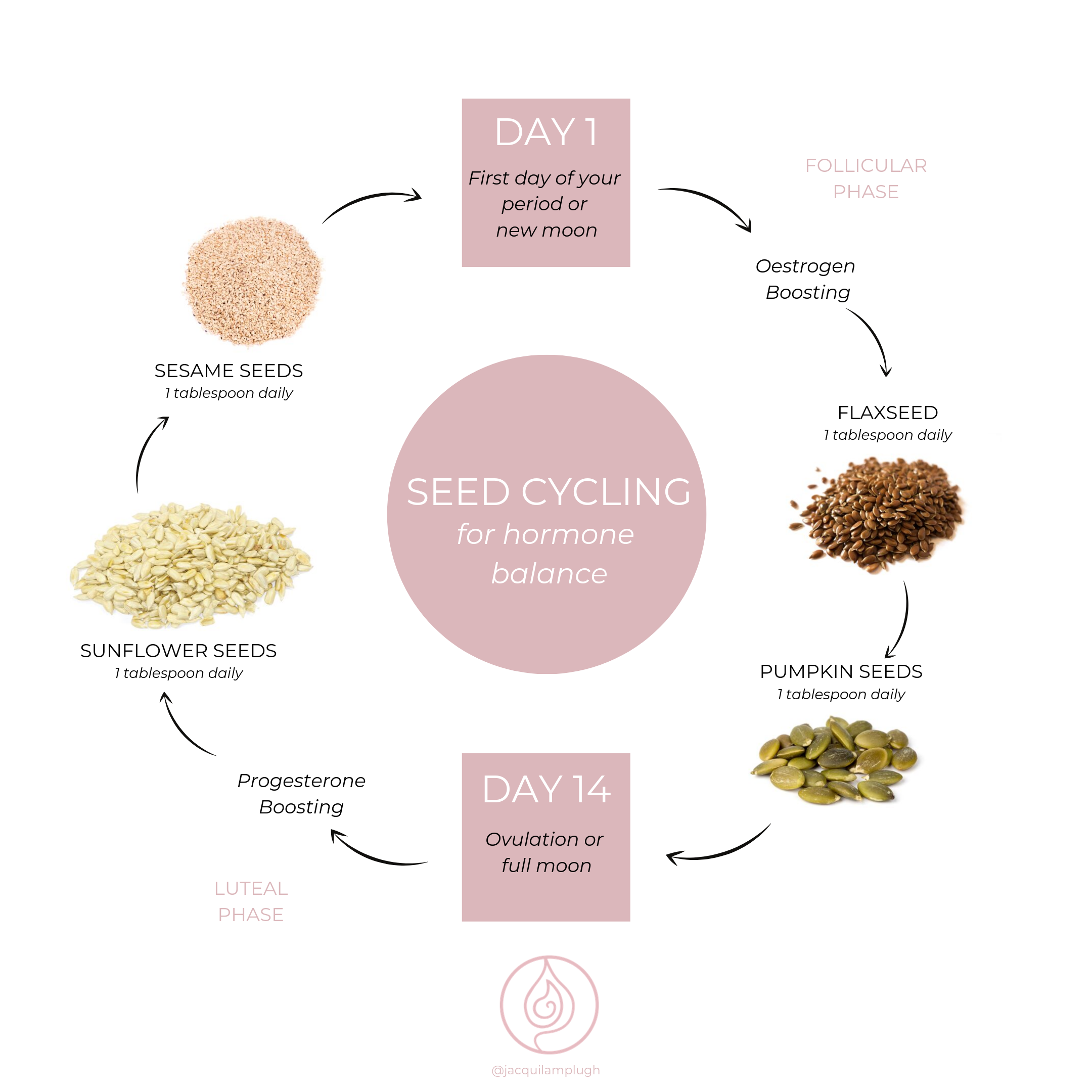 Seed Cycling Diagram.png