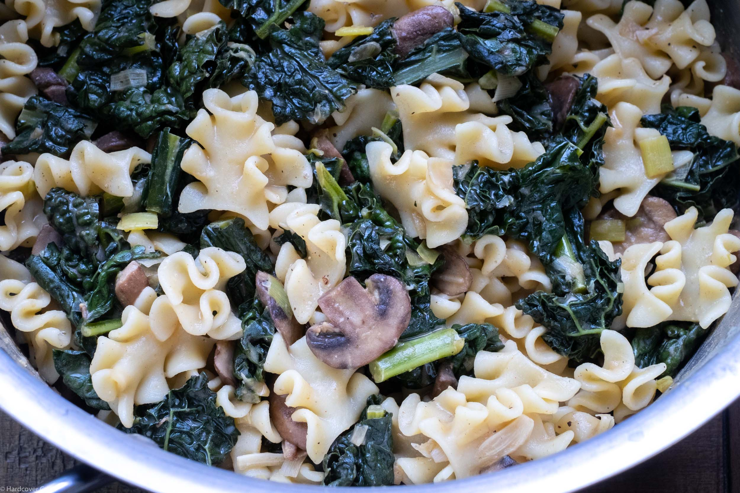 mustardy-mushroom-and-kale-stroganoff-from-dinner-for-everyone.jpg