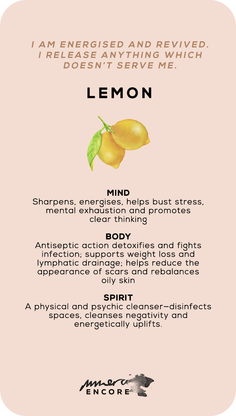 05_back-lemon.png