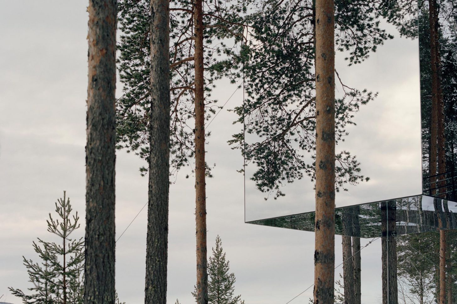 Tree-house-landscape4-1455x970.jpg