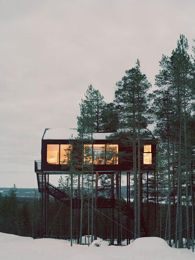Tree-house-portrait6-800x1067.jpg