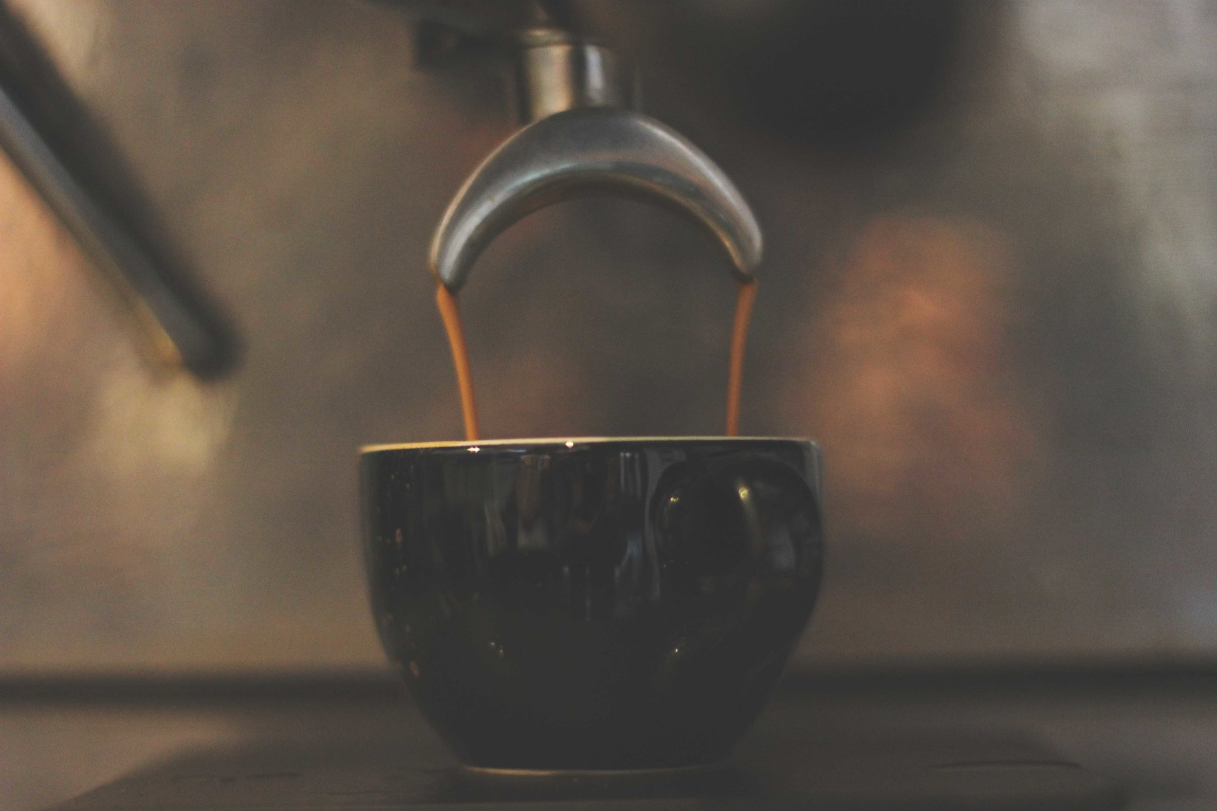 Jordan_Bunker_talking_coffee_with_South_Coast_Roast_5.jpg