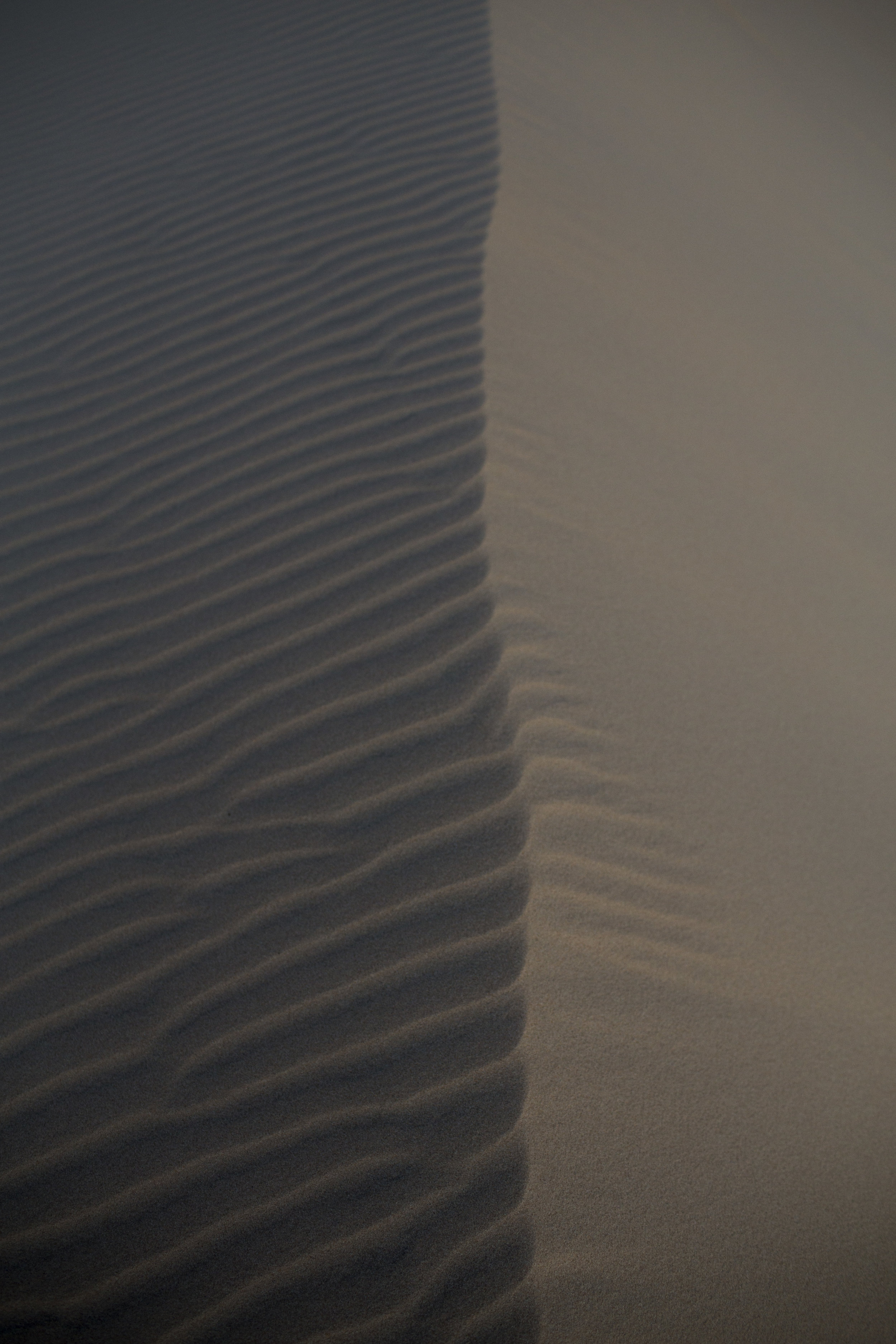 sand dunes 1.jpg