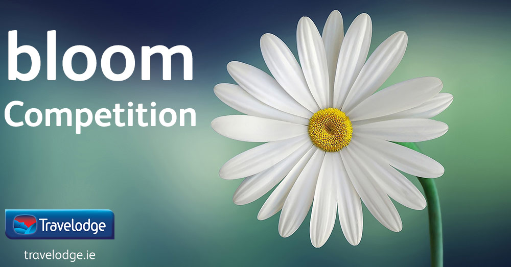 Bloom-comp-Banner.jpg