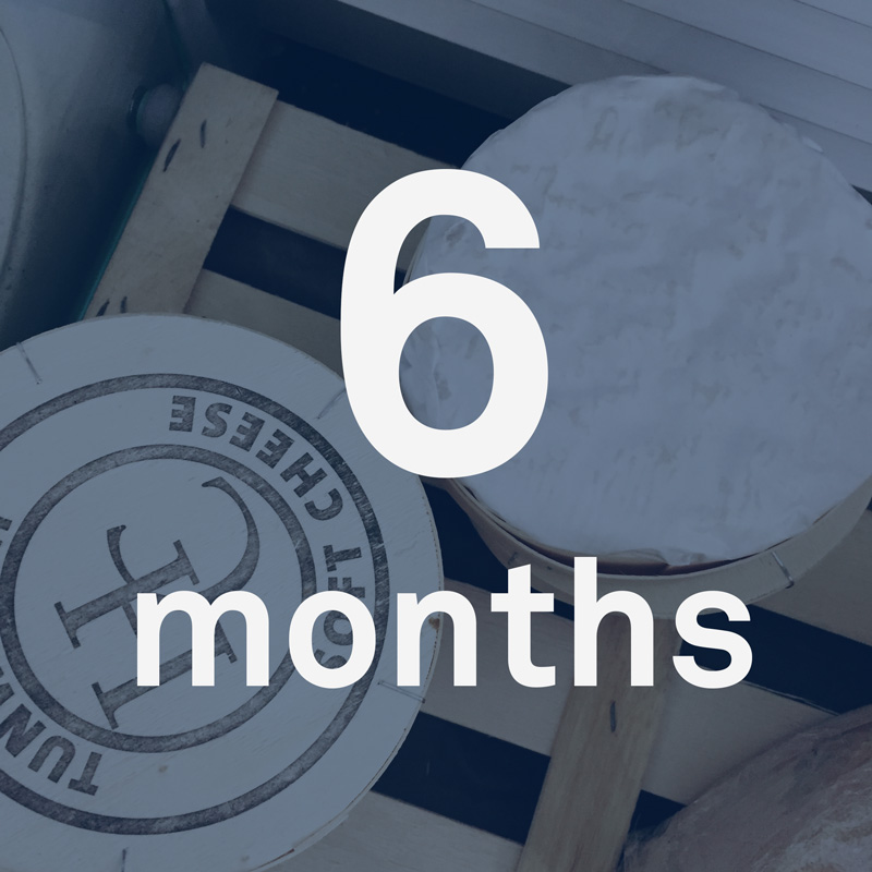 cheese-6-months.jpg