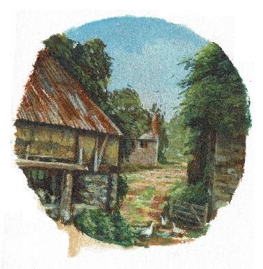 Smallholding Yard