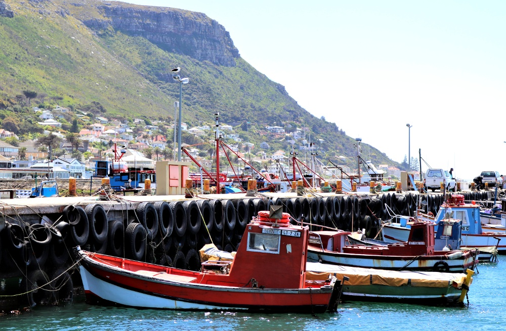 Kalk Bay Harbour (3).JPG