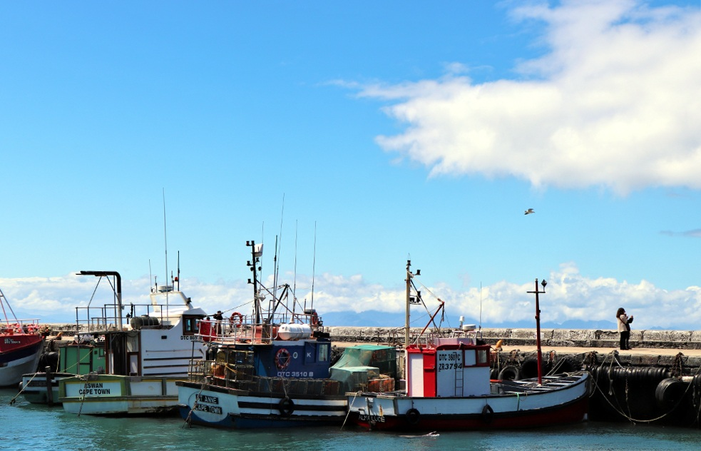 Kalk Bay Harbour (4).JPG