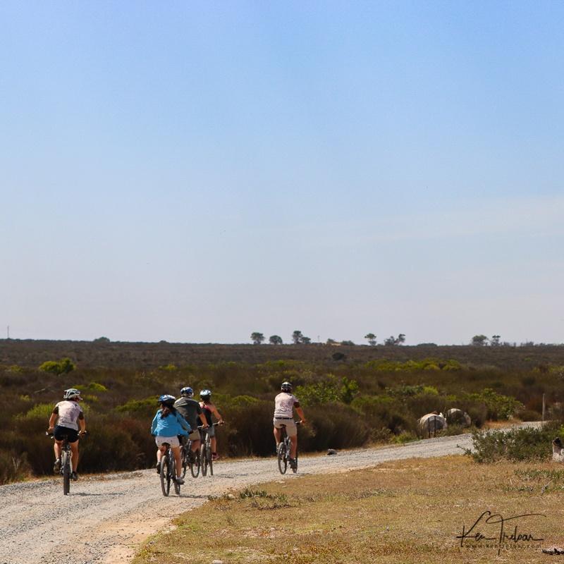 Bike & Saddle Cycle Safari - Buffesfontein - by Ken Treloar Photography - www.kentreloar (6).jpg