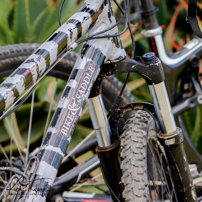 Bike & Saddle Cycle Safari - Buffesfontein - by Ken Treloar Photography - www.kentreloar (3).jpg