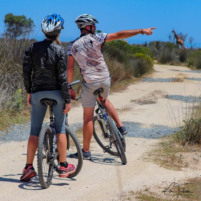 Bike & Saddle Cycle Safari - Buffesfontein - by Ken Treloar Photography - www.kentreloar (7).jpg